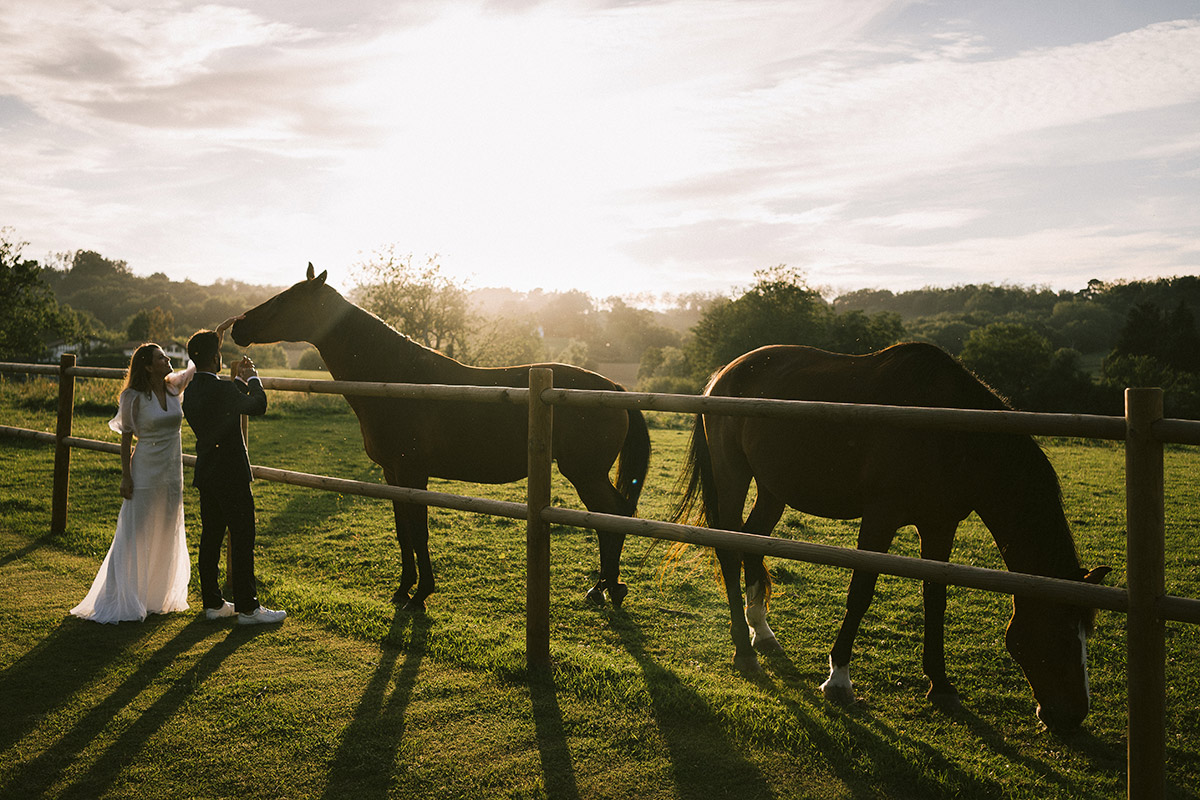 Machoenia caballos Bodas